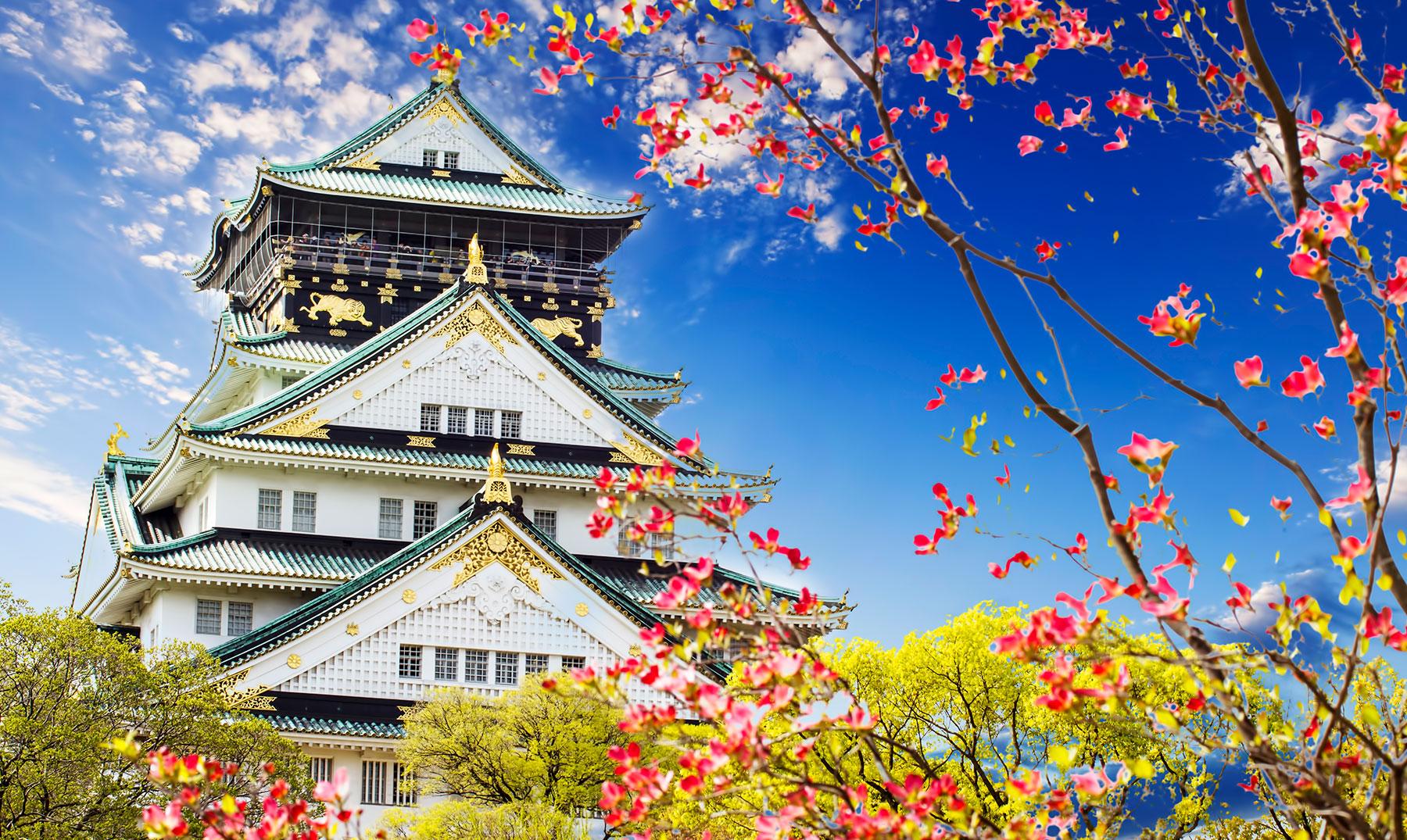 Castillos de Japón