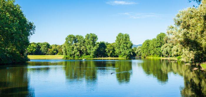 Qué ver en Bonn, Rheinaue Park