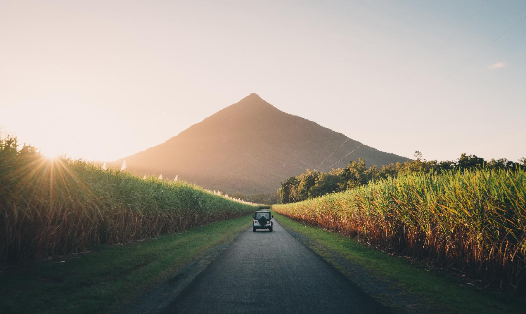Qué ver en Cairns   10 Lugares Imprescindibles