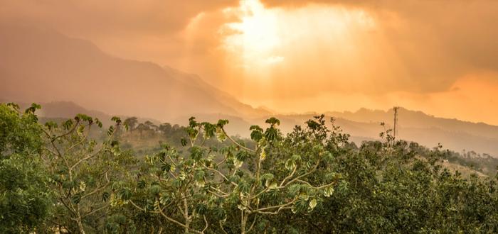 Qué ver en Honduras. Parque Nacional Celaque