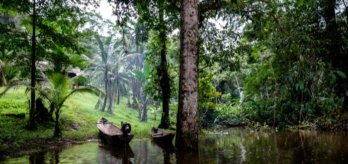 Qué ver en Nicaragua. Reserva biológica Indio Maíz