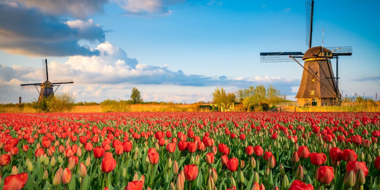 Qué ver en los Países Bajos | 10 Lugares Imprescindibles