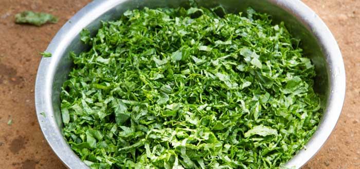Comida típica de Kenia: Sukuma wiki