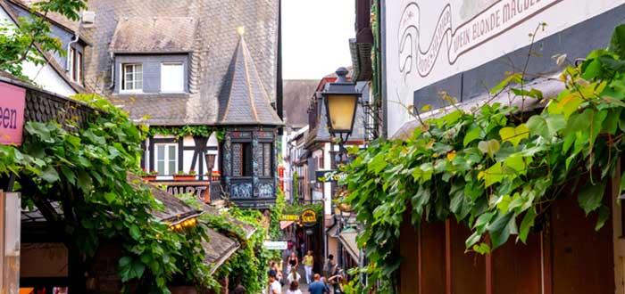 Pueblos de Alemania: Rüdesheim