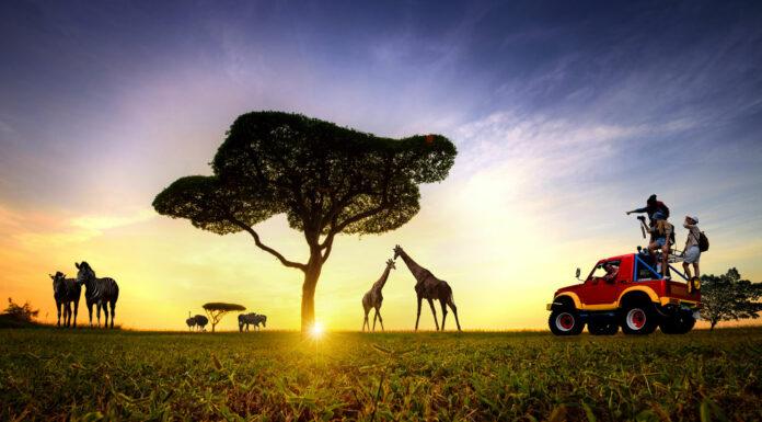 Qué ver en Kenia | 10 lugares imprescindibles