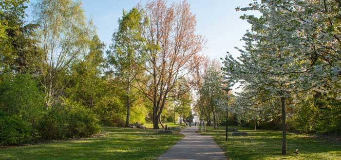 Parque de los Rhododendron de Graal