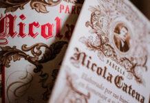 viajar gracias al vino