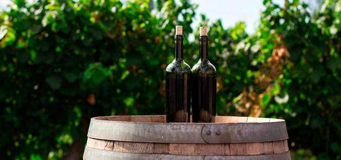 viajar gracias al vino 3