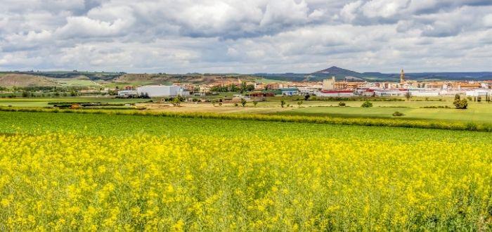 RiojaNatura   Qué ver en Santo Domingo de la Calzada