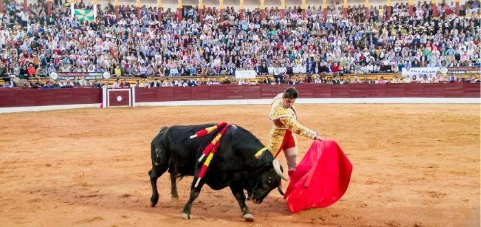 Corrida de Toros | Cultura española