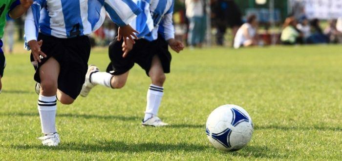 Selección argentina de fútbol   Cultura de Argentina