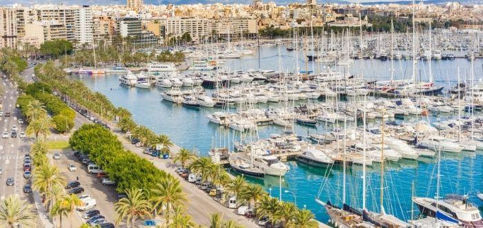 Paseo Marítimo | Que ver en Palma de Mallorca