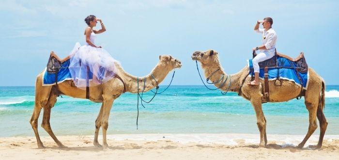 Matrimonios arreglados en Egipto